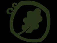 Oak leaf - black - clear background